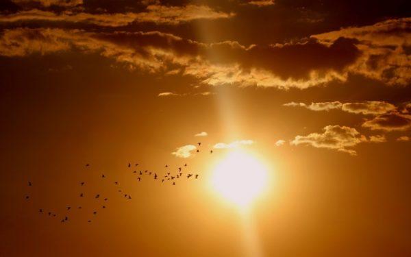 Vară în septembrie: vor fi 30 de grade în majoritatea regiunilor țării până sâmbătă