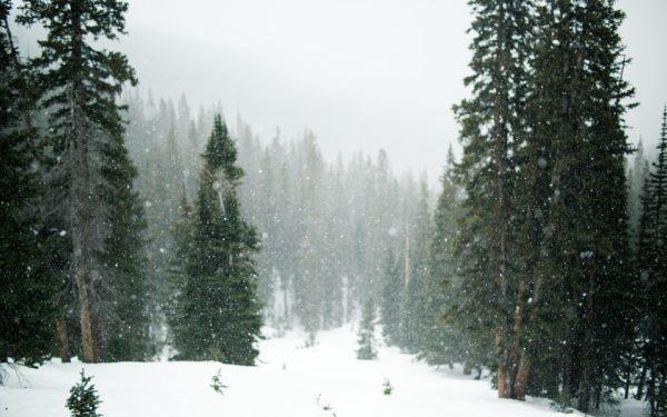 Cod galben de zăpadă și viscol în 24 de județe din țară, printre care și Clujul. Vânt de până la 90 de km/h