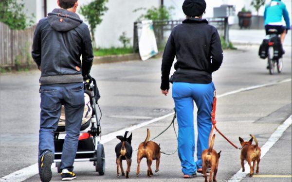 Românii, sănătoși până la 59 de ani în cazul femeilor și 59,9 ani în cazul bărbaților