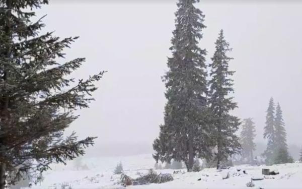 FOTO   S-a întors iarna la Cluj. Ninge în zona de munte la Vlădeasa, dar și la Băișoara