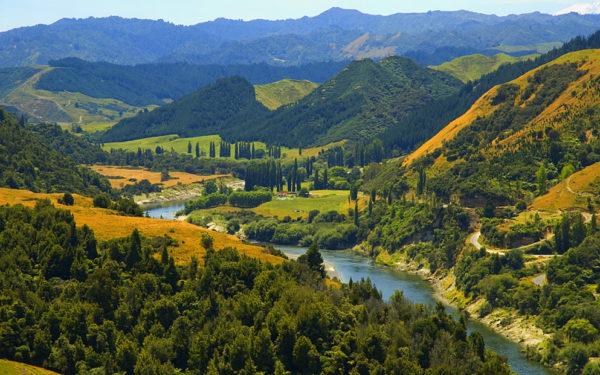 Serialul Stăpânul Inelelor va fi filmat în Noua Zeelandă