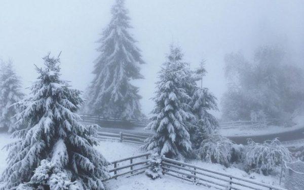 CLUJ | La munte s-a așternut primul strat de zăpadă din această iarnă