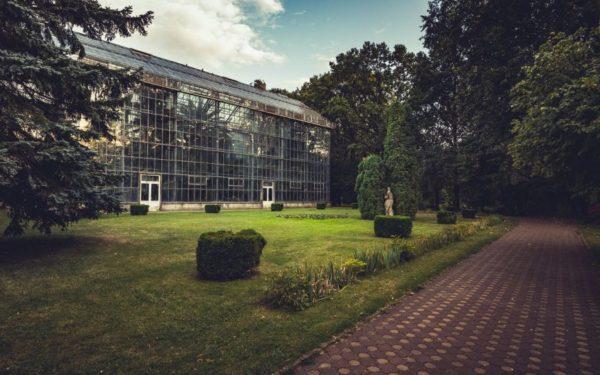 Acțiune de ecologizare în Grădina Botanică din Cluj