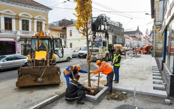 Premieră la Cluj: strada Regele Ferdinand va avea sisteme inteligente de irigații