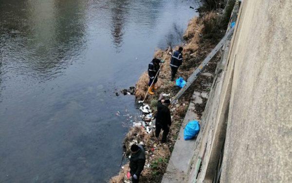 FOTO   Răspuns la sesizarea unui clujean. Angajații de la Apele Române au adunat 30 de saci de deșeuri din Someș